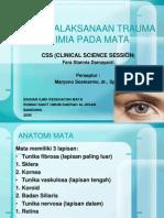 Ppt Trauma Kimia Pada Mata