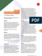 Documento de Sporte-Tamaño de la muestra