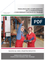 Manual_completo Seguridad