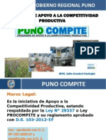 Diapositivas_Puno_Compite