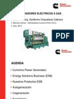 Exposición UN CALLAO CPG Energy Solutions