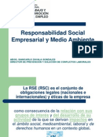 Responsabilidad Social Empresarial g
