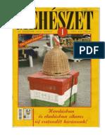 Meheszet 2012 01