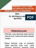 Penyakit Yang Berhubungan Dengan Glandula Sebasea_dr. Siti Elsina Lubis, Sp. KK (K)