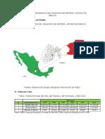 Diagnostico Demografico Del Municipio de Metepec
