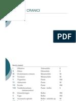 nervicranici breve.pdf
