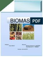 Trabajo Biomasa.