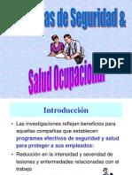 Programas de Seguridad (1)