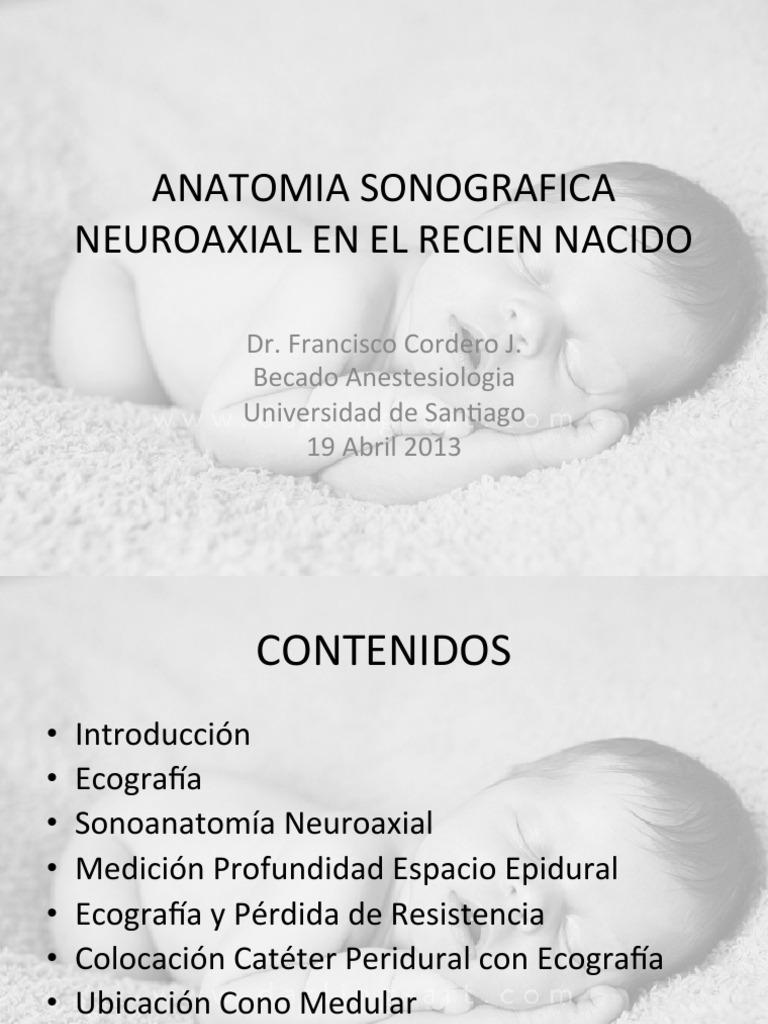 anatomia sonografica neuroaxial en el recien nacido