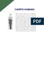 Sopa de Letras El Cuerpo Humano