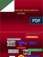 Algoritmo de SBV