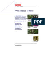 1215970160 Plantas Sombra