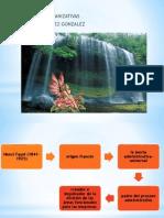 Capacidades Organizativas - Copia