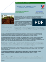 Boletin Informativo INIA-Quilamapu
