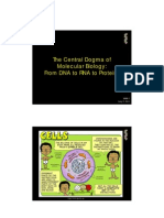 Central Dogma of Biology and Recombinant DNA Technology
