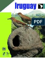 Geo Uruguay 2008