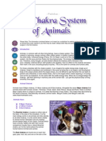 Chakra System of Animals FACT SHEET