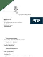 Proiect Didactic Integrat-crizantema