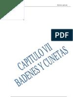 Badenes y Cunetas Libro (1)