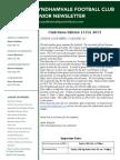 2013 Newsletters Week13