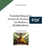 Trulshik Rinpoche Versos de Homenaje a Los Budas y Bodhisattvas