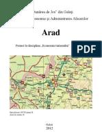 Arad prezentare turism economic