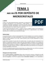 TEMA-1-gota.pdf