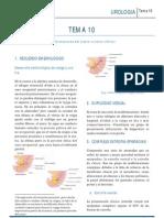 URO_T10.pdf