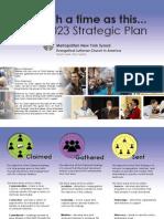 MNYS Strategic Plan