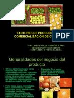 biblioteca_65_Factores de Producción y Comercialización Frutícola
