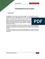 INFORME FLUIDOS N° 1.docx