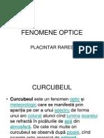 Placintar Rares-fenomene Optice