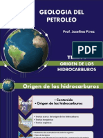 GEOLOGIA DEL PETROLEO. Origen de Los Hidrocarburos Defpptx