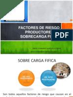 Factores de Riesgo Productores de Sobrecarga Fisica
