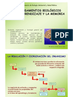 4-SISTEMA NERVIOSO. CENTRAL.pdf