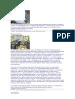 Con la cría de conejos para carne como un medio didáctico productivo a través de un pequeño criadero con capacidad para 12 o 20 hembras reproductoras y recreando con el mismo como si se tratara de una explotación comercial