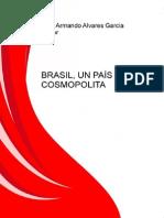 Brasil Un Pais Cosmopolita
