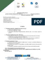 Raport de Practica Format Propus