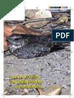 Biodiversidade Da Caatinga - Parte 3.2