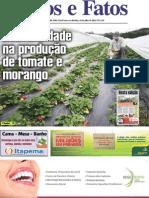 EDIÇÃO 836 ON LINE 12 07 13