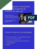 Decreto 170 Paulina Godoy