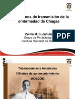 Zulmacp. Mecanismos Transmision Chagas