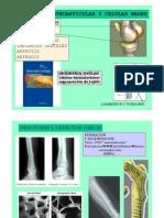 ing tisular y mesenquimales4.pdf