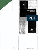 Savigny, Friedrich Karl von - Metodologia Jurídica - edição brasileira