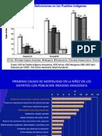 Estrategia Sanitaria Nacional Salud de Los Pueblos Indigenas