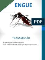 BIO - Dengue e Hidrofobia