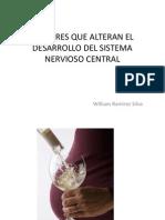 Factores Que Alteran El Desarrollo Del Sistema Nervioso