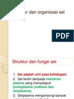 Struktur Dan Organisasi Sel1
