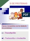 Clase 6 Sintesis de Proteinas