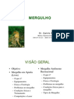 AULA - Mergulho - Camilo - In